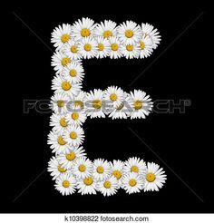 flor, letra Ampliar Foto