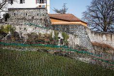 castle Werdenberg