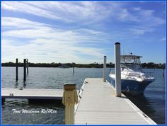 Singing The Blues In Holiday, Florida Toni Weidman Re/Max Sunset