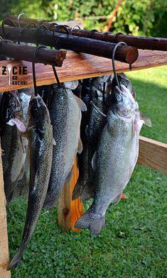 Karp, Food And Drink, Smoking, Fishing, Fishing Rods, Tobacco Smoking, Smoke, Peach, Vaping