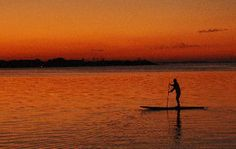 Paddleboarding is the best invention since sliced bread! (Beneath is the link to book). Skip the gym workout this summer, instead hop on the A train to Rockaway Beach for a paddleboarding lesson. Paddleboarding not only rigorously exercises your arm muscles, but you will be surprised to see all the other muscles that are sore the morning after.