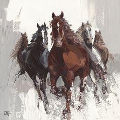 Konie II - Bernard Ott - Vide.pl