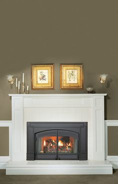 When remodeling or furnishing your home, you want to choose the best quality paint products and pieces to enhance the beauty of the room you're decorating. Through this post ,we will explore how to transform your fireplace surround to match the personality of any room in your home. Fireplaces like any other home appliance need