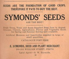 """""""Seeds are the foundation of good crops. Therefore it pays to buy the best. Australian Vintage, Fruit Trees, Vintage Posters, Avon, Schedule, Foundation, Seeds, History, Stuff To Buy"""