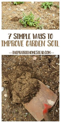 7 Simple Ways to Improve Garden Soil Have poor soil but want to still grow veggies? THERE IS HOPE! These are some of the ways I've been improving the soil in my garden plot, and it's working!