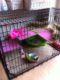 rabbit cage idea                                                                                                                                                      More