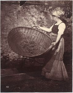 [Peasant Woman with Winnowing Basket]