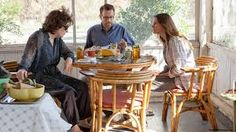 The death and funeral of their father brings three sisters to the home of their mother, Violet (Meryl Streep), an acid-tongued, pill-popping cancer patient. Daughters Barbara (Julia Roberts), Karen (Juliette Lewis) and Ivy (Julianne Nicholson) -- along with their significant others and various other kin -- take the full brunt of their dysfunctional matriarch's venom, for Violet tells every one of them exactly what she thinks of them. Based on the play by Tracy Letts.