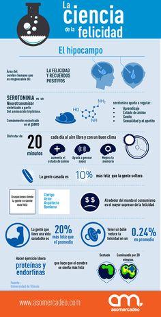 Hola: Una infografía sobre La ciencia de la Felicidad. Vía Un saludo