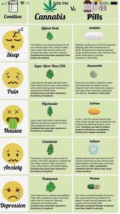 Weed Facts, Marijuana Recipes, Cannabis Edibles, Medical Benefits Of Cannabis, Medical Marijuana, Weed, Stoner Humor, Smoke Weed, Weed Art