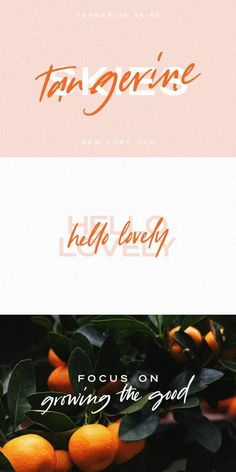 Tangerine Skies Font Duo Illustration Vector, Illustrations, Adobe Indesign, Typography Inspiration, Graphic Design Inspiration, Adobe Illustrator, Typography Fonts, Handwritten Fonts, Script Fonts
