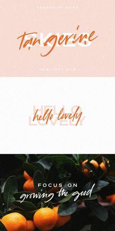 Tangerine Skies Font Duo Vintage Typography, Typography Fonts, Typography Design, Branding Design, Logo Design, Handwritten Fonts, Script Fonts, Design Design, Hand Lettering
