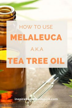 Melaleuca a.k.a. Tea Tree oil has many different uses from skincare to wound care. Learn about it here and add this to your essential oil cabinet. #essentialoil#teatreeoil#benefitsofteatreeoilteatreaoilbenefits#essentialoilblends#melaleuca Buy Tea Tree Oil, Tea Tree Oil Uses, Holistic Wellness, Holistic Healing, Wellness Tips, Natural Life, Natural Skin Care, Natural Health, Tea Tree For Acne