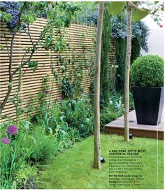 Slat fence (privacy and vertical gardening)