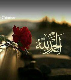 Islam Beliefs, Islam Religion, Allah Islam, Islam Quran, Religion Quotes, Islam Muslim, Islamic Images, Islamic Messages, Islamic Pictures