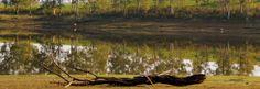 Paisajes de la Sierra Cacereña http://misierradegata.com/fotos/