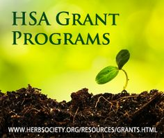 Herb Research Grants from The Herb Society of America The Herb Society of America, Inc. (HSA) offers annual research grants to students, professionals, and individuals engaged in research on the horticultural, scientific, and/or social applications or use of herbs throughout history, based upon the HSA definition of an herb. The defining characteristic for herbs is their usefulness, past or present, including their value for flavoring, medicine, ornament, economic, industrial, or cosmetic…