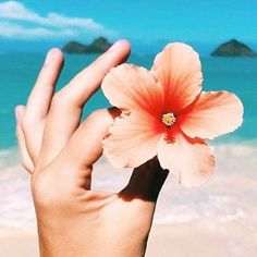 "395 Likes, 1 Comments - FREE PEOPLE HAWAII (@fphawaii) on Instagram: ""Enjoy the simple things in life  // pic: @jaxsea #lovefromFP #alohaspirit"""