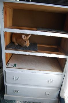 Dresser to Bunny Hutch! | The Mobile Home Woman