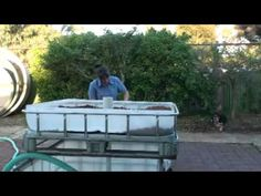Dabbling in Backyard Aquaponics, Setting up the tanks - Roscommon Acres