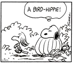 """A Bird-Hippie! I do know like the things from the """"hippie"""" era but this is cute! :-)"""