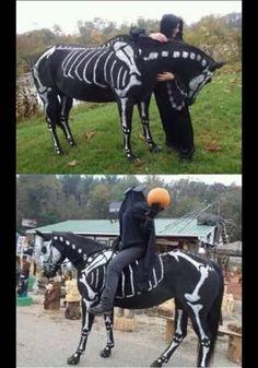 Skeleton horse and Headless Horseman (or Horsewoman), Halloween Horse Halloween Ideas, Horse Halloween Costumes, Pet Costumes, Halloween Kostüm, Holidays Halloween, Costume Ideas, Tigger Halloween, Dark Costumes, Halloween Inspo