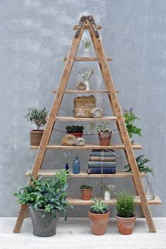 Vintage Reclaimed Ladder Shelves | Home Barn's Rustic Shelving