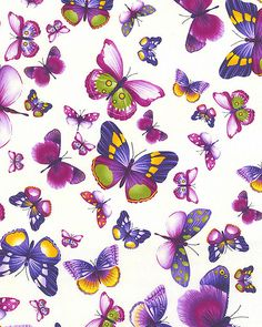 Viola - Butterfly Petals - Cream