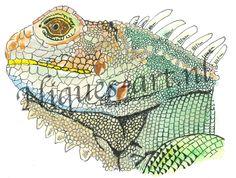 Iguana Animals, Art, Art Background, Animales, Animaux, Kunst, Animal, Animais, Dieren
