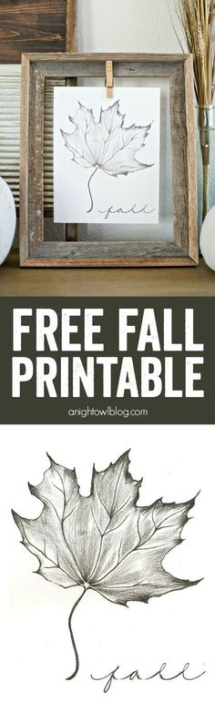 Fall. Free Fall Printable #Fall #Decor