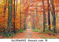 Colorful Autumn Park - Pathways Art Print