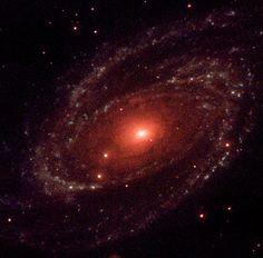 La Galaxia del Bode