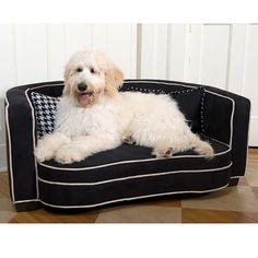 Sofa bed for your slightly larger little pal #dog #furniture