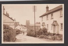 Devon - Whimple Street with Cyclist - Pub Read & Son, The Stores. Some of my ancestors were from Whimple - if you're researching the Sanders or Willsman families, do get in touch! esjones <at> btopenworld.com
