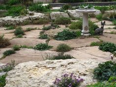 Organic design with natural stone...