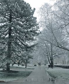 We're now in the midst of finals week and to jump start the Christmas season, we witnessed our very first snow of winter!