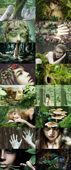 Greek Myths - Gaia Hera/ Persephone/ Athena/ Artemis/ Aphrodite/ Hestia/ Demeter/ Hecate/ Selene/ Eos/ Asteria Gods Series