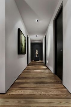 Black doors wood floors.