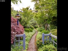Take a stroll through the garden of make-believe :) I love these highly vegetated walkways