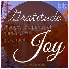 """Gratitude changes the pangs of memory into a tranquil joy."" - Dietrich Bonhoeffer #gratitude #joy"