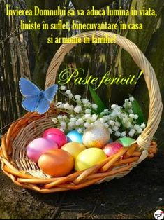 Happy Easter, Eggs, Breakfast, Amin, Internet, Easter Activities, Happy Easter Day, Morning Coffee, Egg