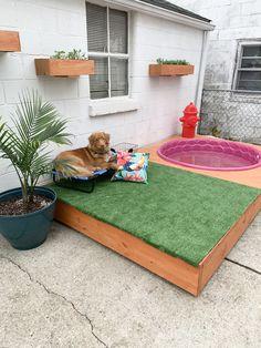 Dog Pool and deck diy Backyard Dog Area, Dog Friendly Backyard, Outdoor Dog Kennel, Outdoor Dog Area, Diy Dog Kennel, Puppy Room, Dog Playground, Dog Spaces, Dog Rooms