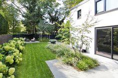 Back Garden Landscaping, Hydrangea Landscaping, Modern Landscaping, Outdoor Landscaping, Outdoor Plants, Back Garden Design, Garden Landscape Design, Back Gardens, Small Gardens