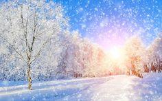 winter wallpaper desktop, 8512x5320 (7016 kB)