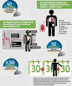 Donación de organos en Mexico