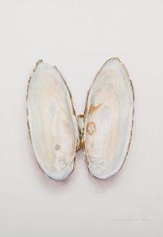 Saara Vainio: Helmisimpukka / Pearl Shell. Watercolour, 17 x 25 cm. 2016