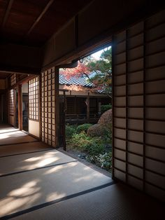 高桐院 Kotoin Temple by かがみ~, via Flickr