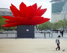 Giant red lotus