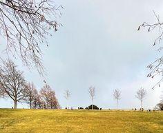 Rosengarten Country Roads, Instagram, Outdoor, Roses Garden, Outdoors, Outdoor Living, Garden