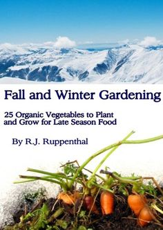 Fall and Winter Gardening: 25 Organic Vegetables to Plant and Grow for Late Season Food - http://goodvibeorganics.com/fall-and-winter-gardening-25-organic-vegetables-to-plant-and-grow-for-late-season-food/